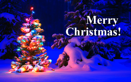 Merry Christmas and Happy Holidays from artist Rachel Dickson